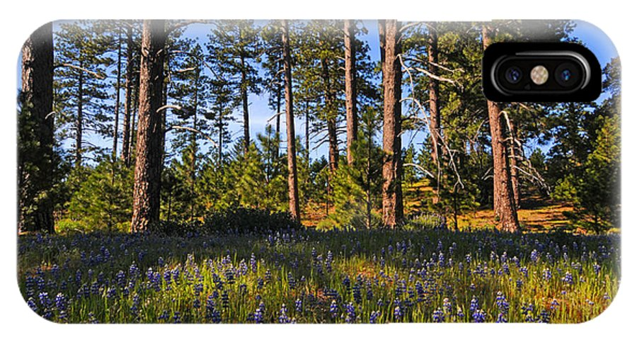 Spring IPhone X Case featuring the photograph Spring Lupines In The Forest by Lynn Bauer