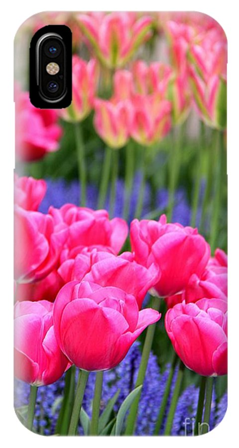 Tulips IPhone X Case featuring the photograph Springtime Blooms In Holland by April Antonia