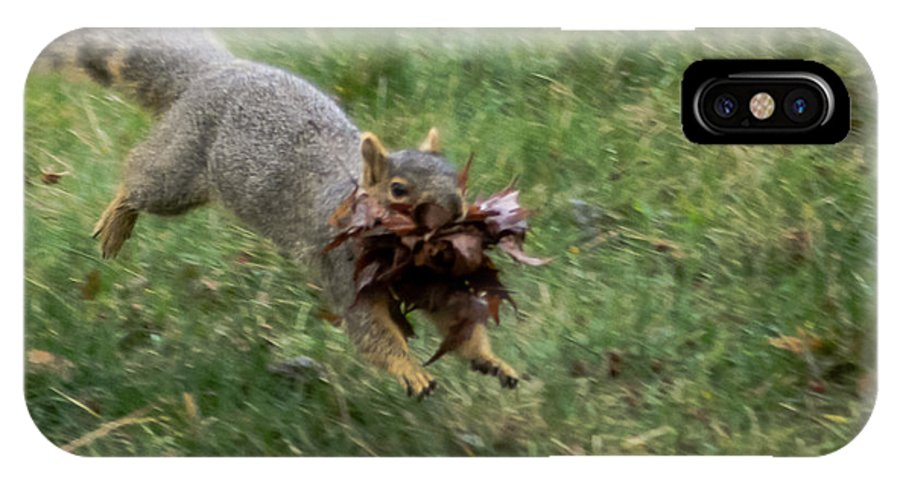 Squirrel IPhone X Case featuring the photograph Squirrel Nest Bulding by Robert Bales