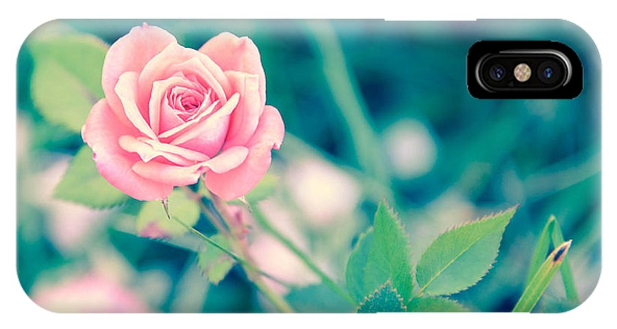 Flower IPhone X Case featuring the photograph Stand Out by Kimberly Mitchell