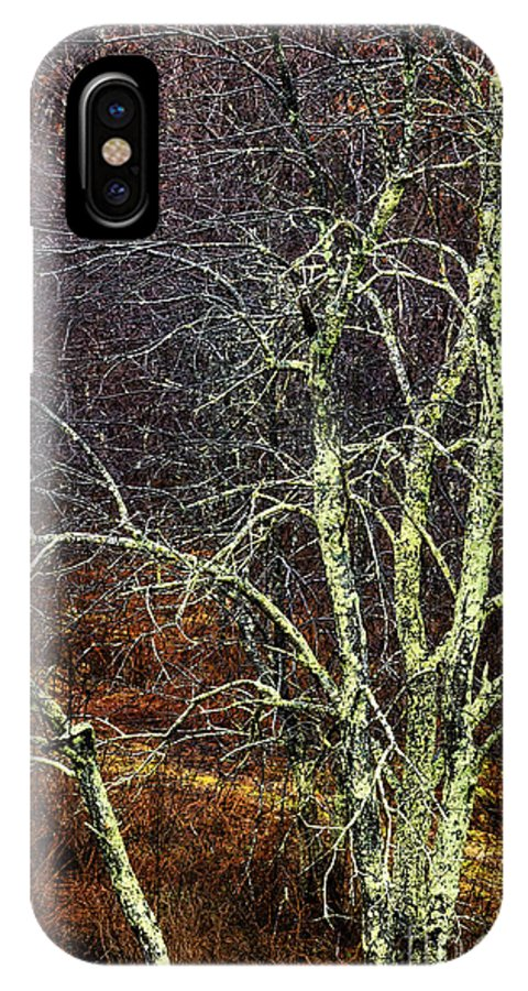 Winter IPhone X Case featuring the photograph Stand Out by Thomas R Fletcher