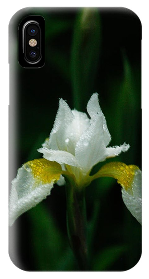 White IPhone X Case featuring the photograph Standing Alone by Jessica Lowell