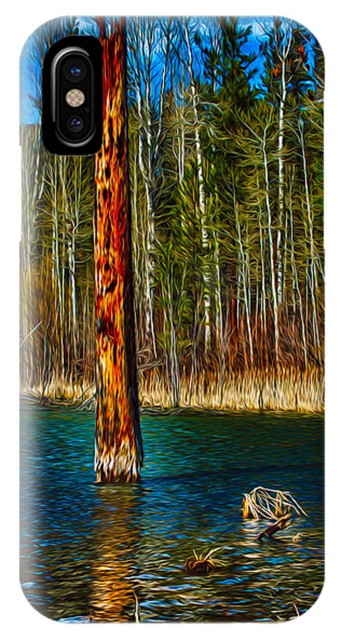 Beaver IPhone X Case featuring the painting Standing Alone by Omaste Witkowski