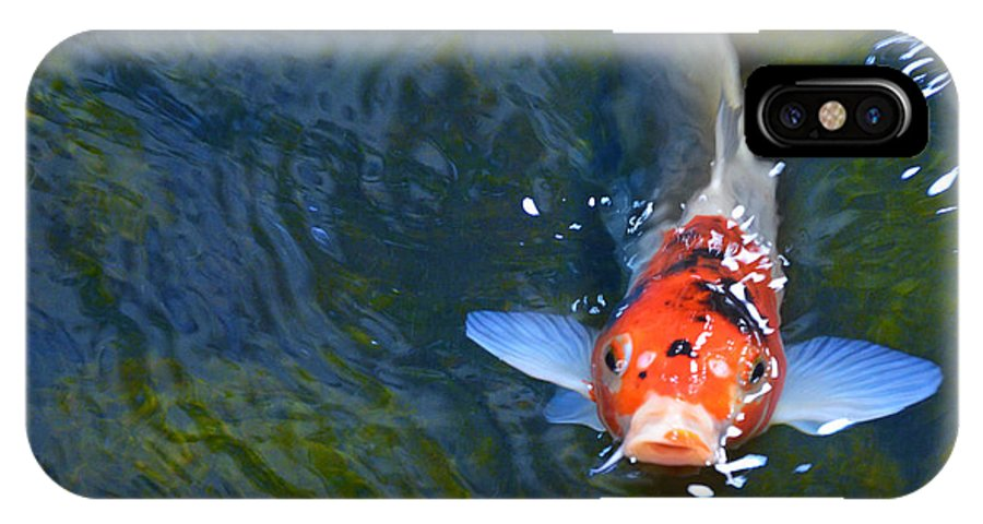 Koi IPhone X Case featuring the photograph Stare Down With A Koi by Wendy Raatz Photography