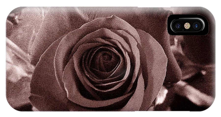Flowers IPhone X Case featuring the photograph Static Rose by Kindra Marie
