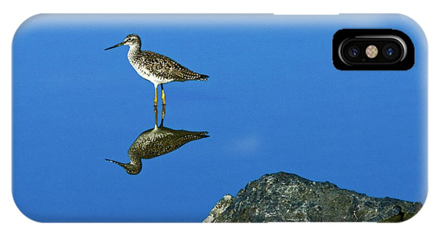 Sandpiper IPhone X Case featuring the photograph Still Water by Rob Mclean
