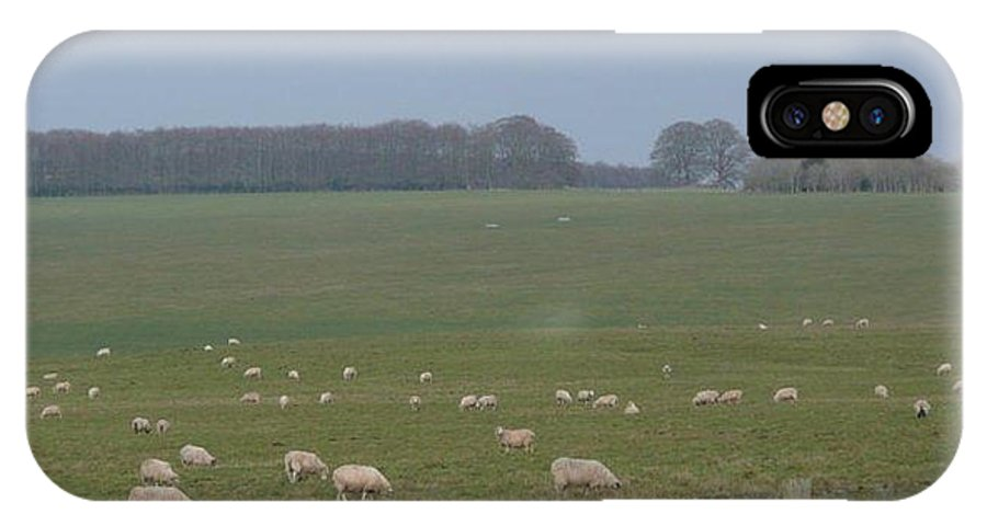 Stonehenge IPhone X Case featuring the photograph Stonehenge Sheep by J Shawn Conrey
