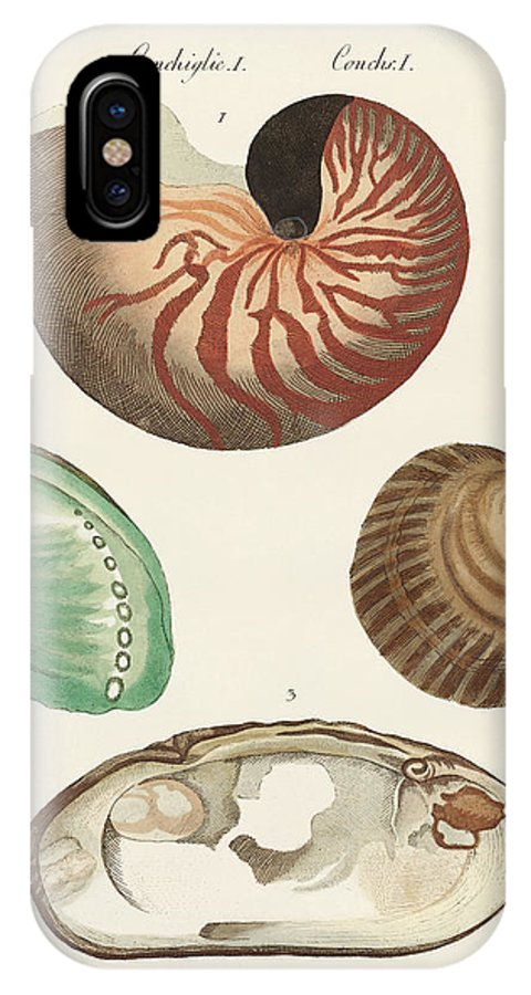 Nautilus IPhone X Case featuring the drawing Strange Snails And Clams by Splendid Art Prints
