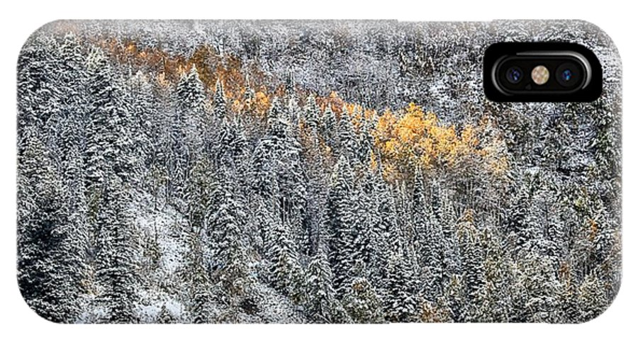 Autumn IPhone X Case featuring the photograph Streak Of Gold by Mitch Johanson