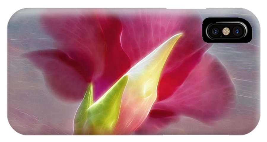 Hibiscus IPhone X / XS Case featuring the photograph Striking Hibiscus Flower by Sharon M Connolly