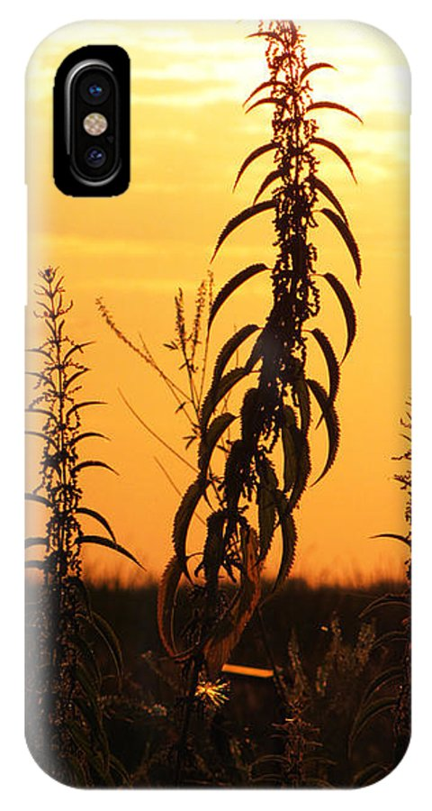 Ron Tackett IPhone X Case featuring the photograph Strive by Ron Tackett