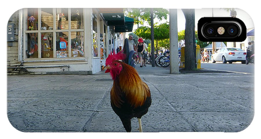 Rooster IPhone X Case featuring the photograph Strutting by Jon Emery