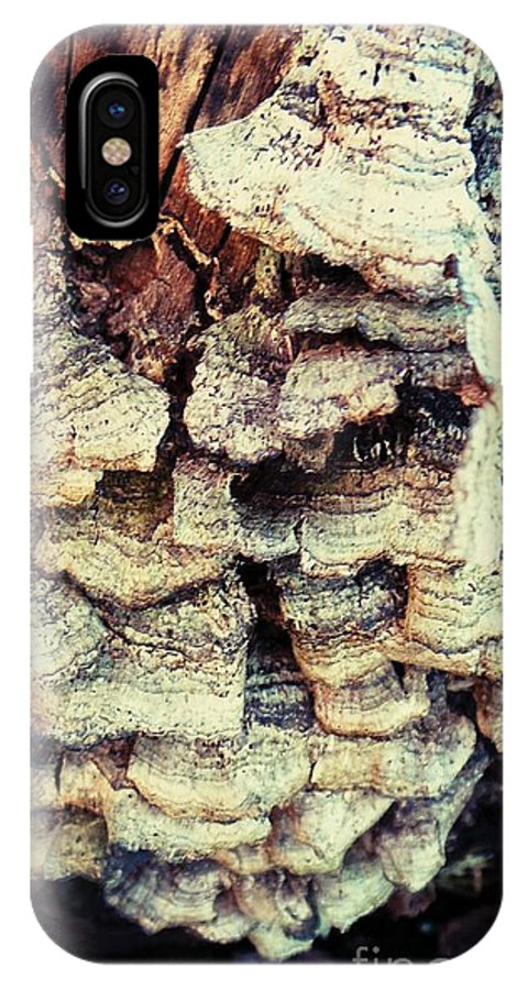 Stump Of Tree IPhone X / XS Case featuring the photograph Stump Fungshroom by Heather Taylor