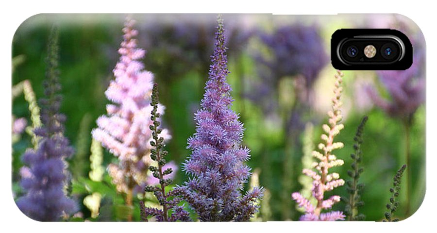 Flower IPhone X Case featuring the photograph Summer Astilbe by Susan Herber
