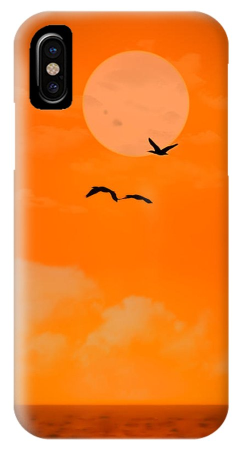 Sunset IPhone X Case featuring the photograph Sunbirds by Andrew Lawlor