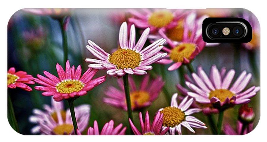Flora IPhone X Case featuring the photograph Sunday Splash by Richard Cummings