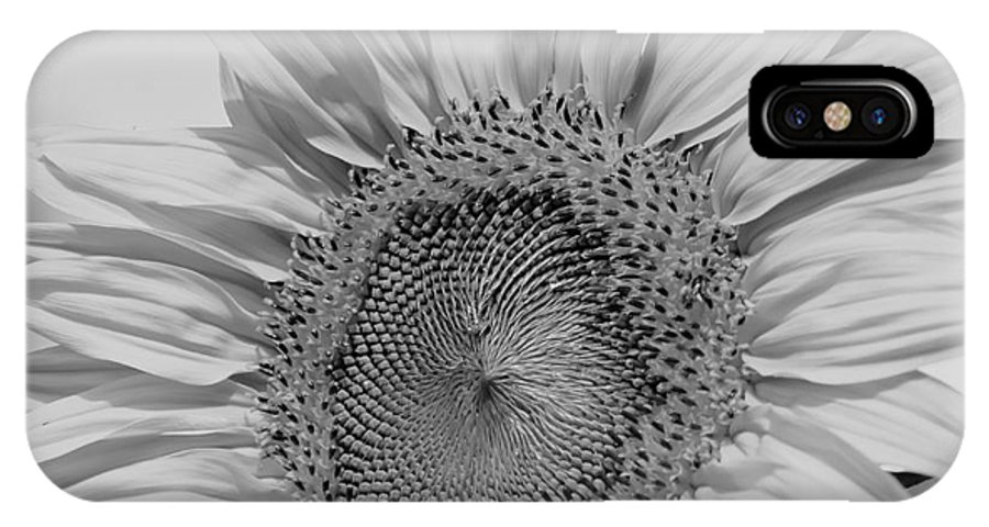 Sunflowers IPhone X Case featuring the photograph Sunflower Black And White by Wilma Birdwell