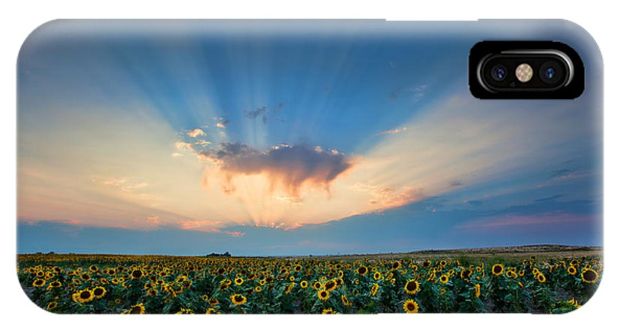 Flowers IPhone X Case featuring the photograph Sunflower Field At Sunset by Jim Garrison