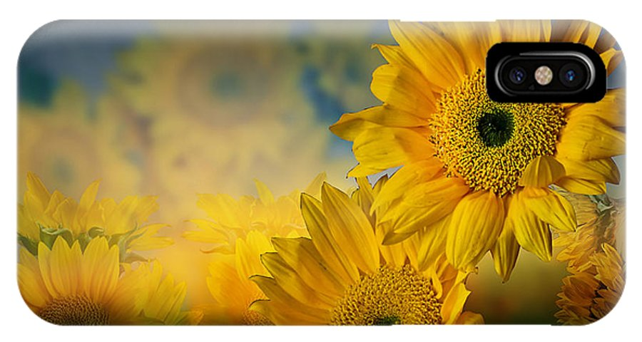 Sunflowers IPhone X Case featuring the photograph Sunflower Garden by Shirley Mangini