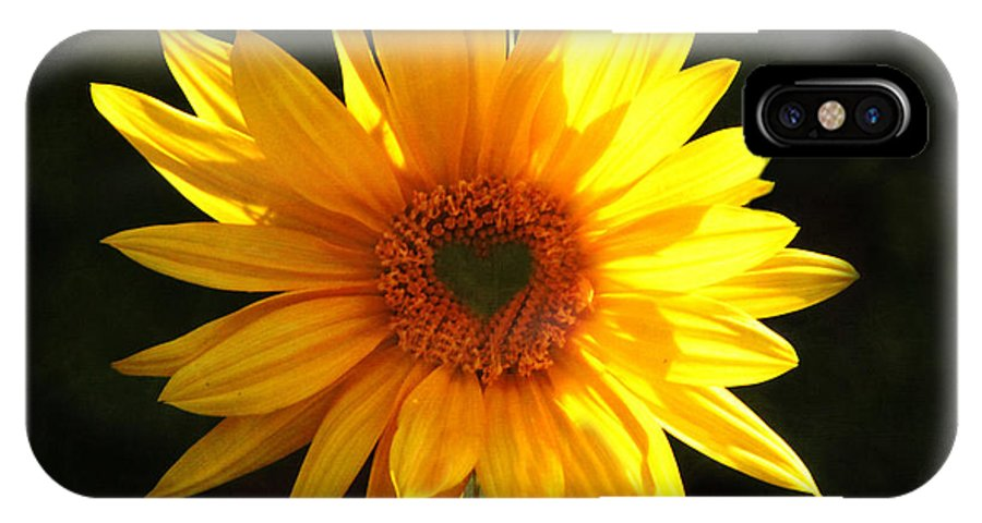 Sunflower IPhone X Case featuring the photograph Sunflower Love by Marjorie Imbeau