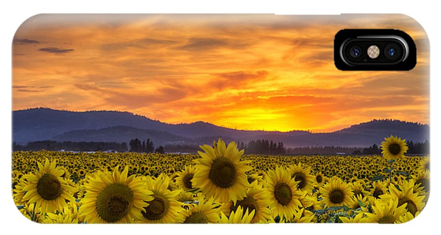 Sunflower IPhone X Case featuring the photograph Sunflower Sunset by Mark Kiver