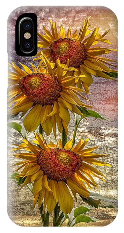Clouds IPhone X Case featuring the photograph Sunflower Trio by Debra and Dave Vanderlaan