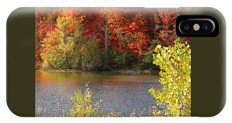 Autumn IPhone X Case featuring the photograph Sunlit Autumn by Ann Horn