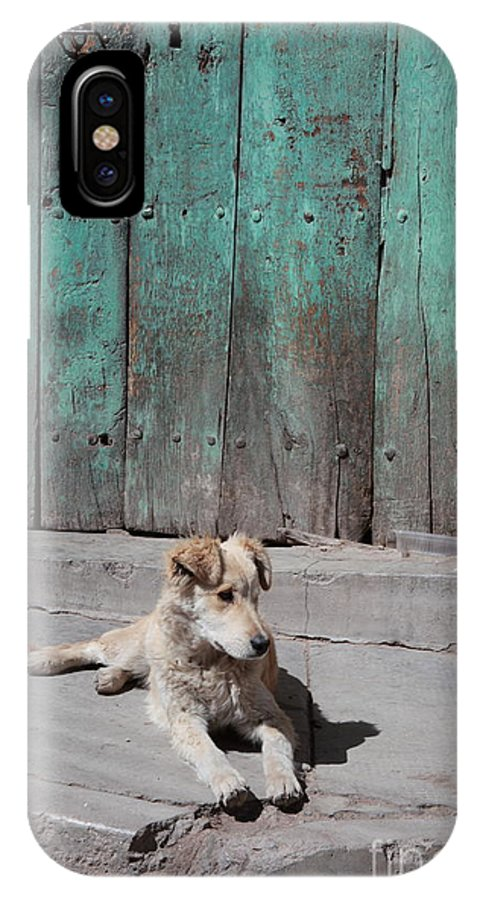 Dog IPhone X Case featuring the photograph Dog Enjoying A Sunny Doorstep by James Brunker