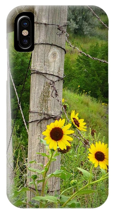 Fence IPhone X Case featuring the photograph Sunny Fence by Mary Willrodt