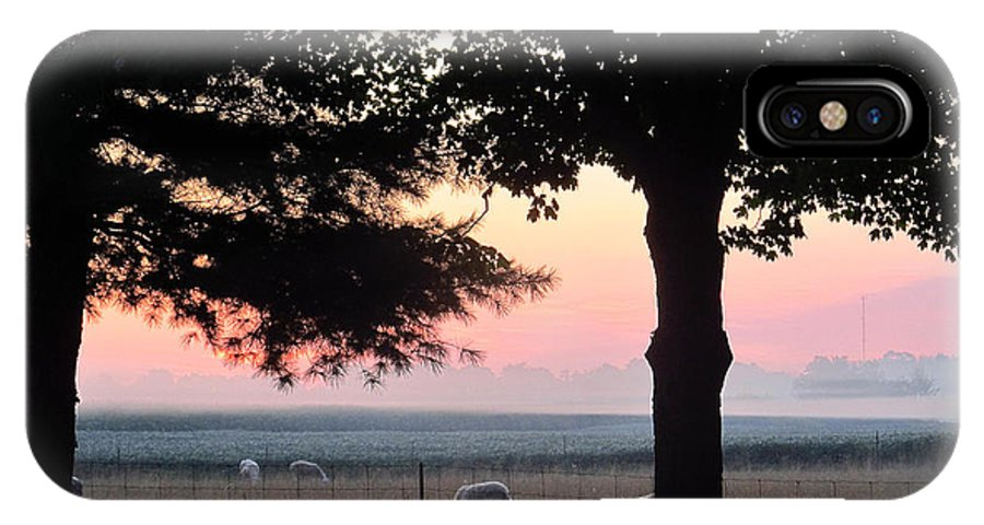 Sun IPhone X Case featuring the photograph Sunrise 365 35 by Tina M Wenger