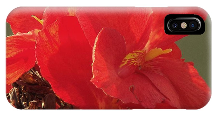 Flowers IPhone X Case featuring the photograph Sunrise Flowers by Bonnie
