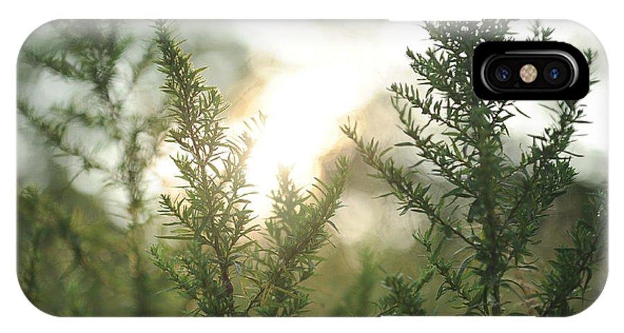 Sunrise IPhone X / XS Case featuring the photograph Sunrise Over Greenery by Olga Ska