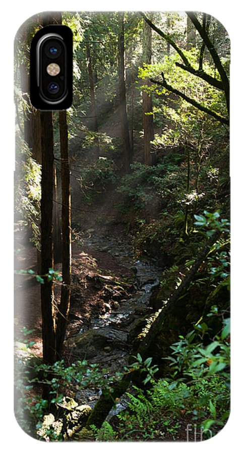 Wooded IPhone X Case featuring the photograph Sun's Rays by Juanita Cannan