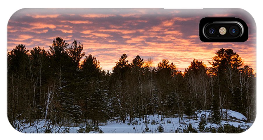 IPhone X Case featuring the photograph Sunset Over The Winter Forest by Cheryl Baxter