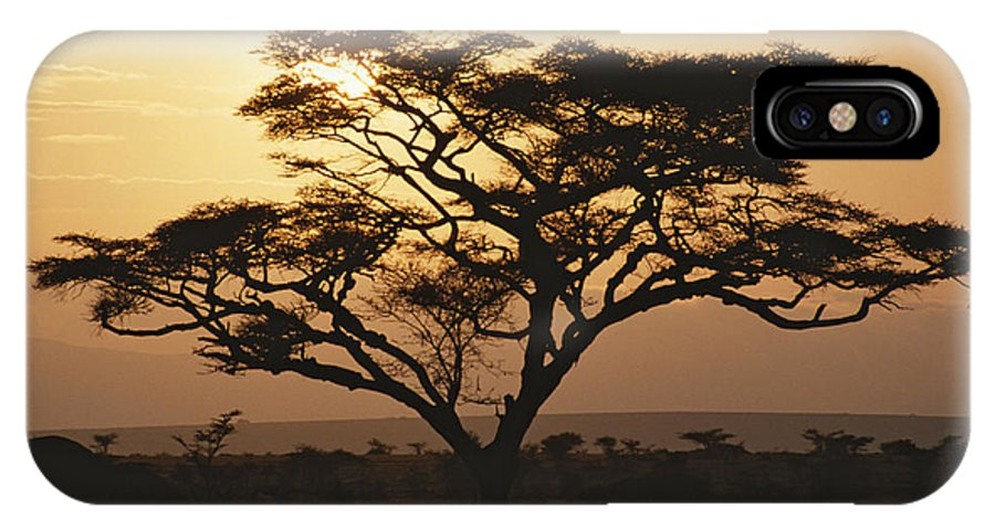Color Image IPhone X / XS Case featuring the photograph Sunset Through A Silhouetted Acacia by Tim Laman
