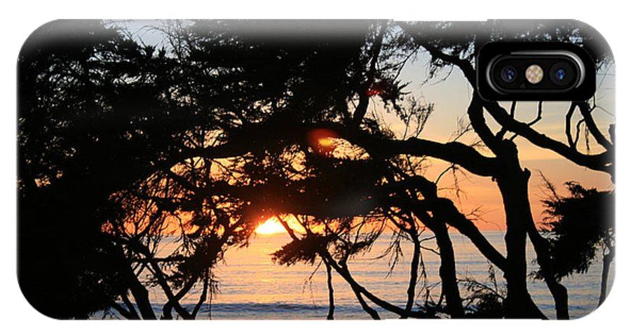 Beach IPhone X Case featuring the photograph Sunset Through The Cypress Trees Cambria by Ian Donley