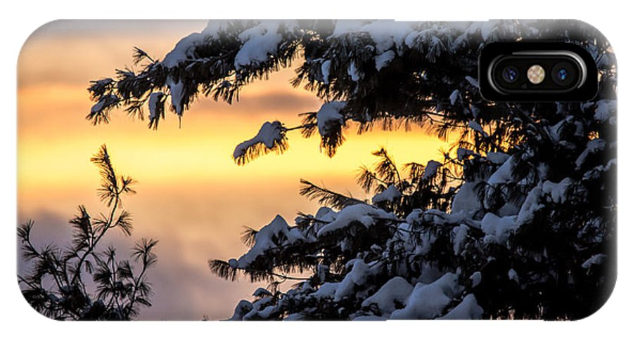 IPhone X Case featuring the photograph Sunset Through The Snowy Branches by Cheryl Baxter