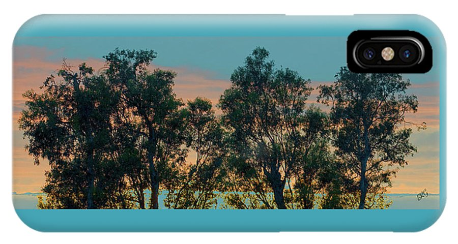 Tree Top IPhone X Case featuring the photograph Sunset Trees by Ben and Raisa Gertsberg