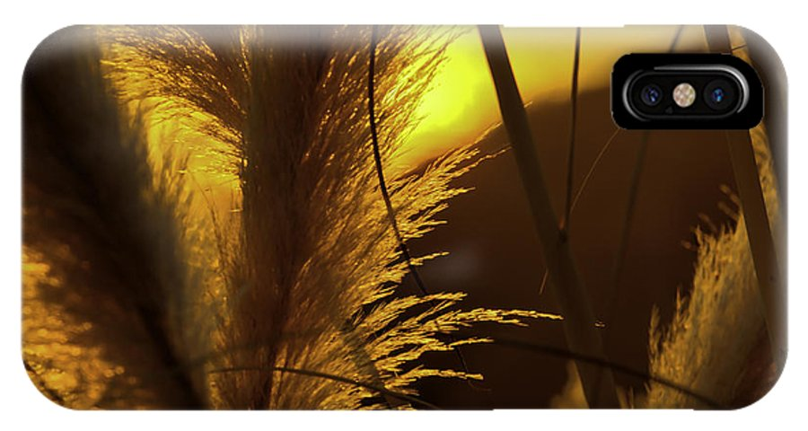 Sunset IPhone X Case featuring the photograph Sunset With Reeds by Allen Hrenyk