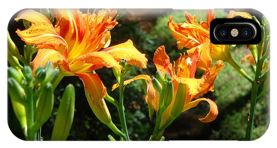 Daylily IPhone X Case featuring the photograph Sunshine by Jean Blackmer