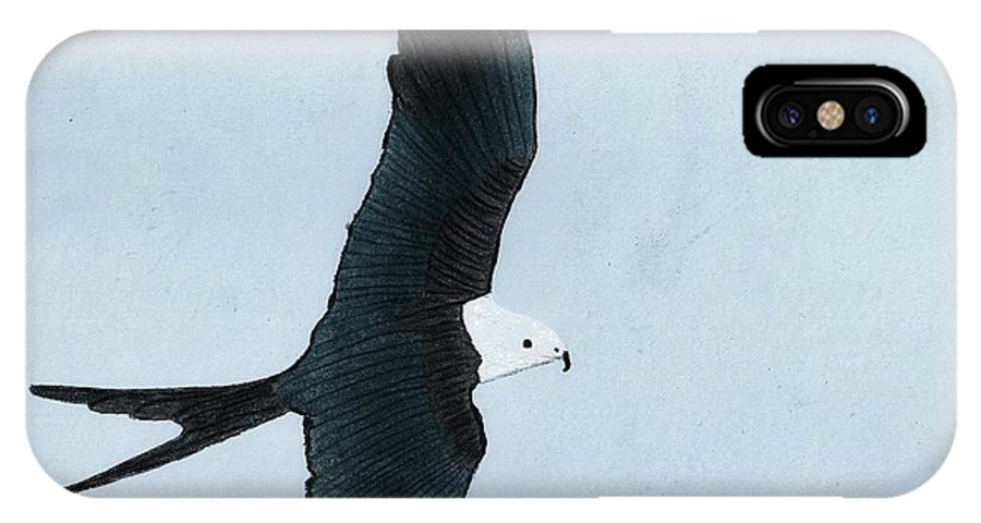 Bird IPhone X Case featuring the drawing Swallow Tailed Kite by D Hackett