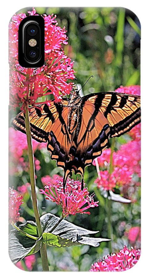 Swallowtail IPhone X Case featuring the photograph Swallowtail Butterfly by Rona Black