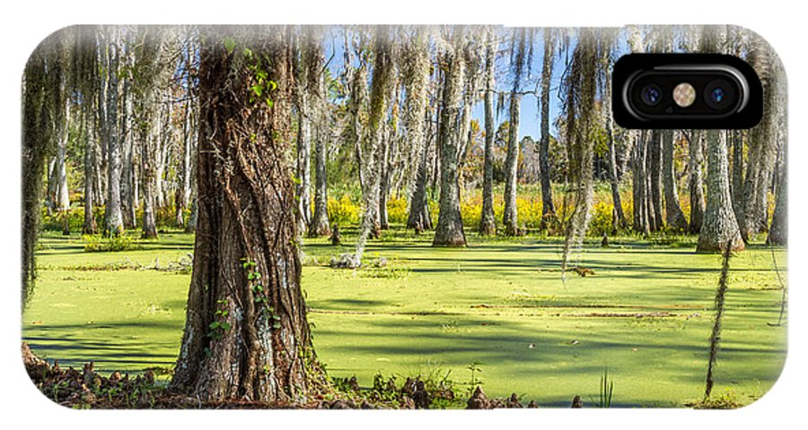 Swamp IPhone X Case featuring the photograph Swamp In Magnolia Plantation And Gardens Charleston Sc by Pierre Leclerc Photography