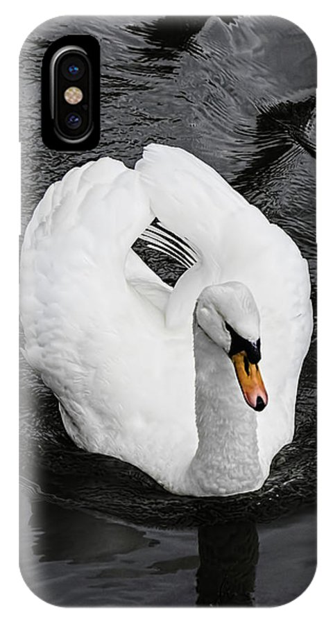 Swan Nature Wildlife Bird Swimming Summer Lake Plumage Graceful Elegant Purity White Peaceful Beautiful Water Animal Closeup Cygnus Feathers Bill IPhone X Case featuring the photograph Swan 2 by Nick Field
