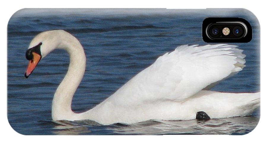 Swan IPhone X Case featuring the photograph Swan by Sandra Nafziger