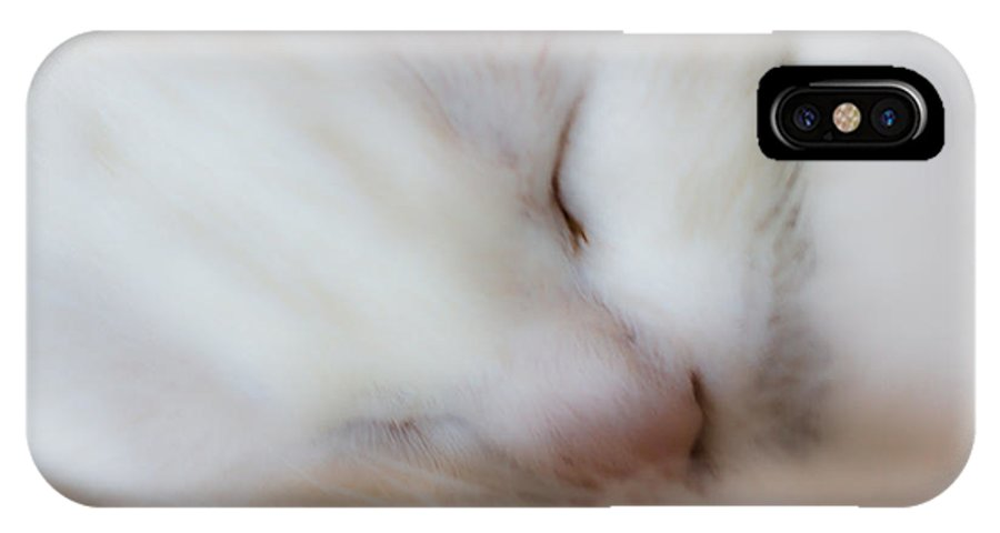 Sweet IPhone X Case featuring the photograph Sweet Dreams by Edgar Laureano