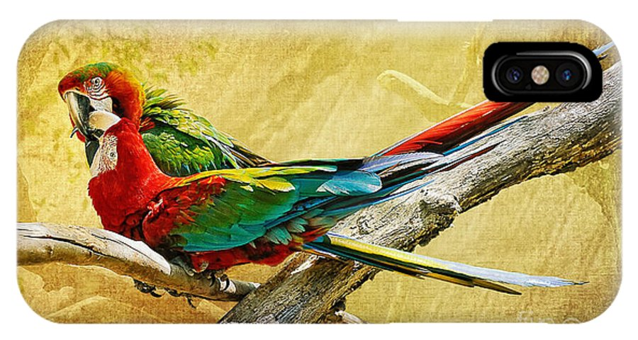 Parrot IPhone X / XS Case featuring the photograph Sweet Sweet Love by Lois Bryan