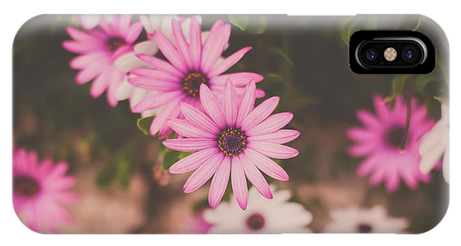 Art IPhone X / XS Case featuring the photograph Sweetness by Claudia Casal