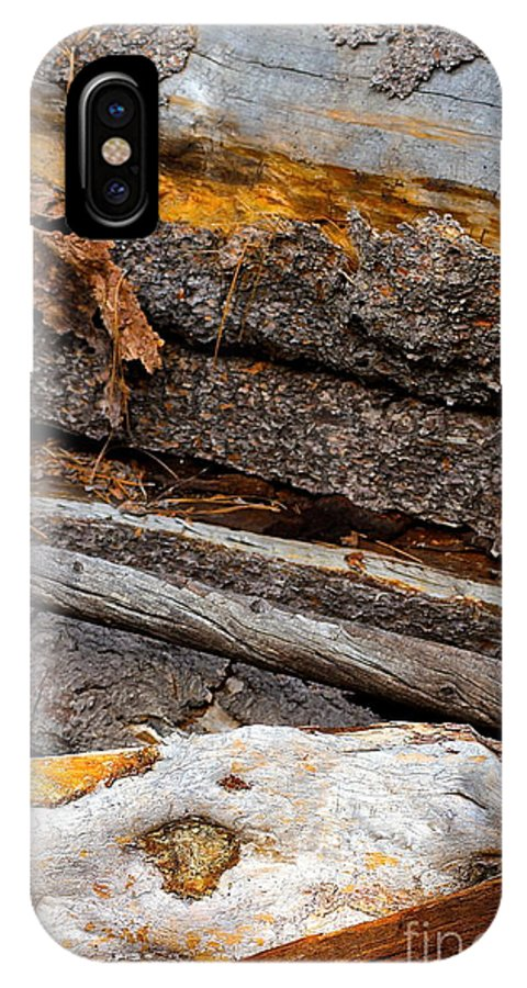 Tree Bark IPhone X Case featuring the photograph Switchback by Suzanne Oesterling