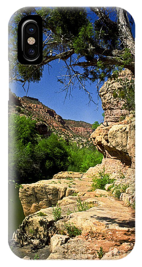 Arizona IPhone Case featuring the photograph Sycamore Canyon by Kathy McClure